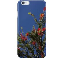 Baby Bottle Brush Tree iPhone Case/Skin