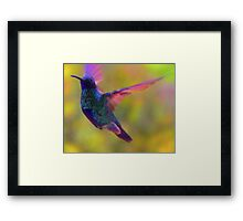 My Spirit Is Soaring Framed Print