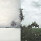 mirror of seasons II by doubleblind