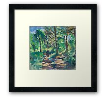 Shady Forest Framed Print