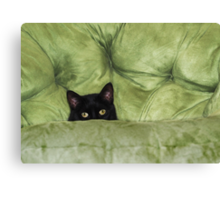 Green-Eyed Girl On Papason Chair Canvas Print