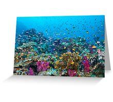 Fantasea Reef Greeting Card