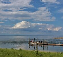 Kings Park Bluff (Panorama) by Gilda Axelrod