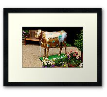 Stylish Guernsey Cow Framed Print