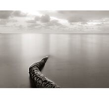 Long exposure seascape with fallen palm tree Photographic Print
