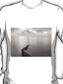 Long exposure seascape with fallen palm tree T-Shirt
