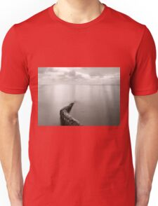 Long exposure seascape with fallen palm tree Unisex T-Shirt
