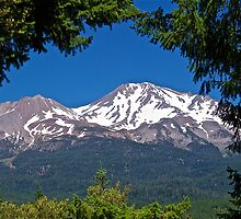 Mount Shasta Scenic by John Butler