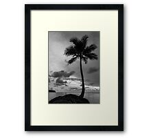 Palm tree silhouette in black and white Framed Print