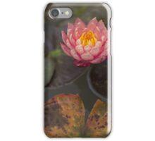Rusty iPhone Case/Skin