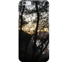"Pacific Northwest Sunset on ""Dog Mountain"" iPhone Case/Skin"