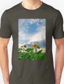 View of field with blooming sunflowers with sunset in background T-Shirt