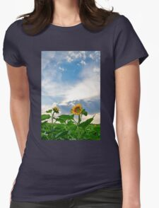 View of field with blooming sunflowers with sunset in background Womens Fitted T-Shirt