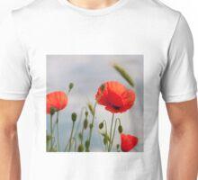 bright red corn poppy flowers in summer Unisex T-Shirt