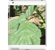Dragonfly of the Pacific Northwest Oregon iPad Case/Skin