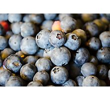 Blueberry Photographic Print