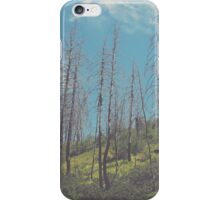 South Prong Trail iPhone Case/Skin