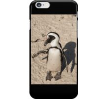 Penguin shadow boxing, South Africa iPhone Case/Skin