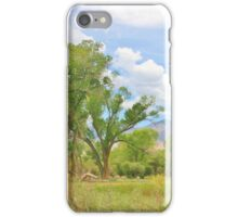 Mother Natures Beauty iPhone Case/Skin