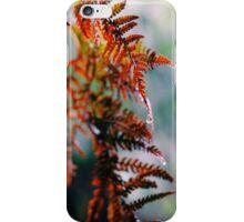 A Gentle Winter iPhone Case/Skin