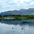 Derwent Water Marina, Portinscale, Cumbria, UK by GeorgeOne