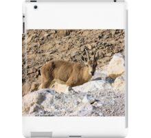Mountain little goat iPad Case/Skin