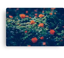 Moody Blooms Canvas Print