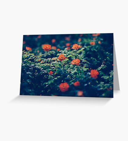 Moody Blooms Greeting Card