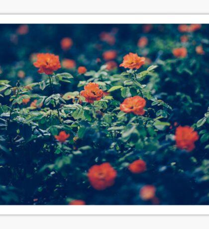 Moody Blooms Sticker