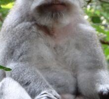 Balinese serious monkey Sticker
