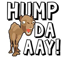 Camel Hump Day, Guess What Day It Is?!? Photographic Print