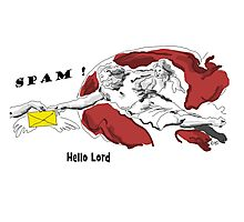 Spam - Hello Lord Photographic Print