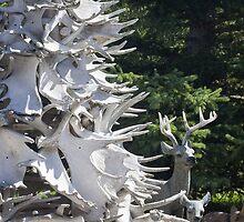 Moose Horn Tree by Sandra Foster