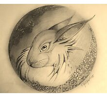 Hare in the Moon Photographic Print