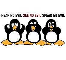Three Wise Penguins Design Graphic Photographic Print