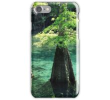 Morrison Springs iPhone Case/Skin