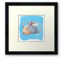 Rattie Trio Framed Print