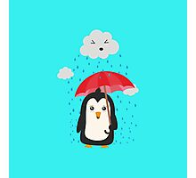 Penguin in the rain   Photographic Print