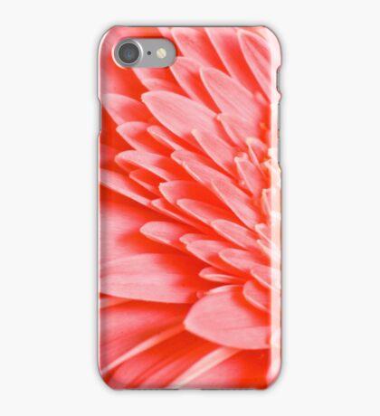 Pink Gerbera Macro iPhone Case/Skin