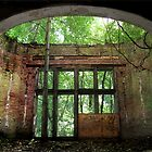 The Beauty of the Dilapidation by Angelika  Vogel