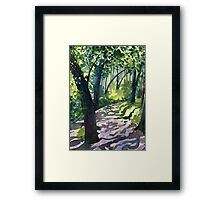 Path into the trees - Descanso Gardens Framed Print