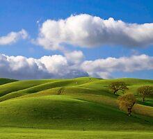 Hills by Radek Hofman