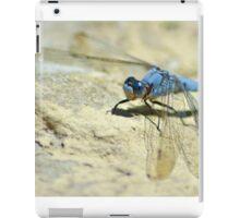 I Am The Dragon iPad Case/Skin
