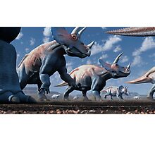 Triceratops Herd Photographic Print