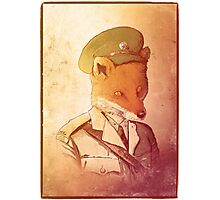 Red Army Fox Photographic Print