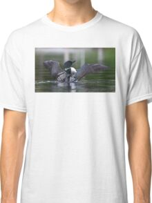 Common loon at 6am Classic T-Shirt