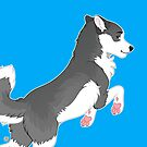 Jumping Husky by etuix