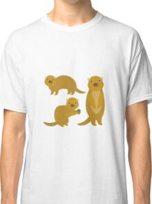 Squirrels with an Acorn Classic T-Shirt