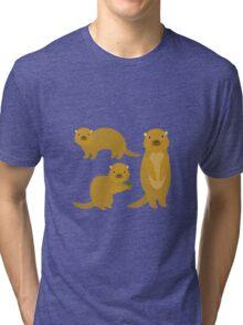 Squirrels with an Acorn Tri-blend T-Shirt