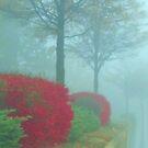 one foggy morning by ANNABEL   S. ALENTON